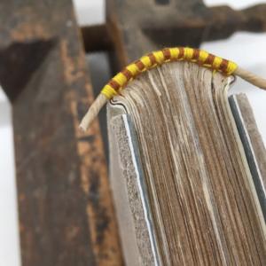 Book Binding/Rebinding